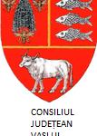 CJ VASLUI V1